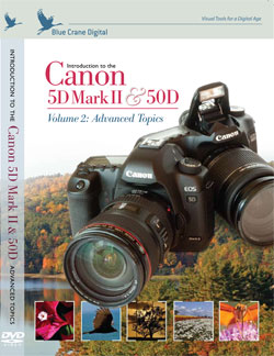Introduction to the Canon EOS 50D: Vol 2 Adv Topics
