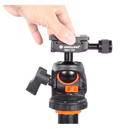 BBH-100 Light Duty Ball Head w/ Quick Release